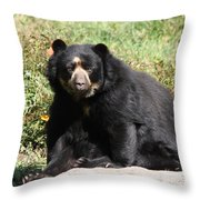 Speckled Bear Throw Pillow