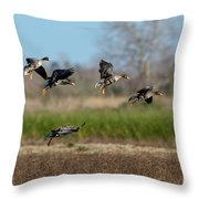Speckled Belly Geese Landing Throw Pillow