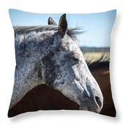 Speckled Gray Throw Pillow