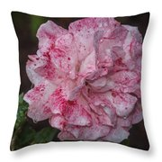 Speckled Rose Throw Pillow