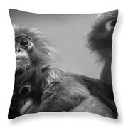 Spectacled Langur Family Throw Pillow