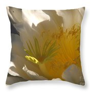 Spectacular Dragon Fruit Bloom Throw Pillow
