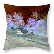 Spectral Wilderness And Copper Sky Throw Pillow