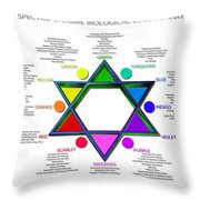 Spectro-chrome Throw Pillow