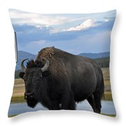 Speedy Bison In Yellowstone National Park Throw Pillow