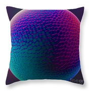 Spherical Variations 1. Throw Pillow