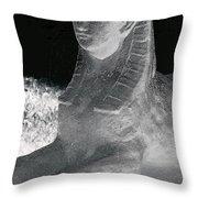 Sphinx Statue Three Quarter Profile Bw Glow Usa Throw Pillow