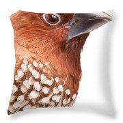 Spice Finch Lonchura Punctulata Portrait Throw Pillow