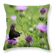 Spicebush Swallowtail Heaven Throw Pillow