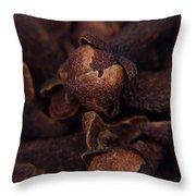 Spicy Close-ups Cloves Throw Pillow