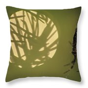 Spider And Sunlight Throw Pillow