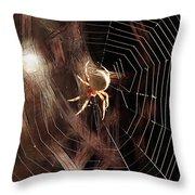 Spider - Building A Ferris Wheel Throw Pillow