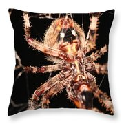 Spider - Hairy Throw Pillow