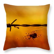 Spider In A Web Throw Pillow