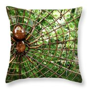 Spider In Its Web Throw Pillow