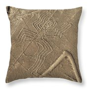 Spider In The Desert Throw Pillow