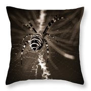 Spider In Waiting Throw Pillow