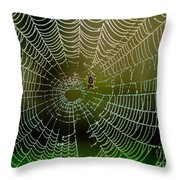 Spider In Web 3 Throw Pillow