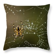 Spider In Web 5 Throw Pillow