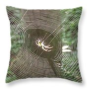 Spider Light Throw Pillow
