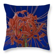 Spider Lily #1 Throw Pillow