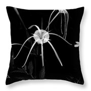 Spider Lily Throw Pillow