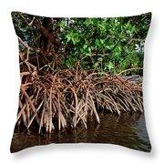 Spider Mangroves Oro Bay Throw Pillow