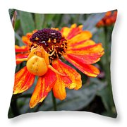 Spider On Helenium Throw Pillow