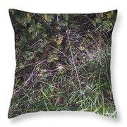 Spider Web Art. Throw Pillow