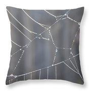 Spider Web In Rain Throw Pillow