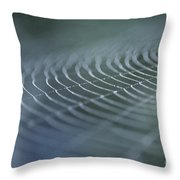 Spider Web With Dew Throw Pillow