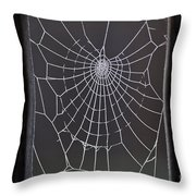 Spider Web With Frost Throw Pillow
