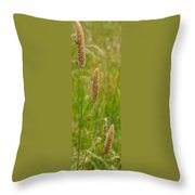 Spider's Grass Staircase Throw Pillow