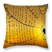 Spiders Heaven Throw Pillow