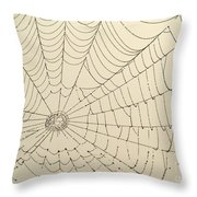 Spiderweb At Dawn Throw Pillow