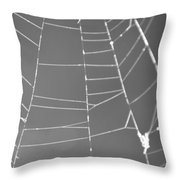 Spiderweb Bw Throw Pillow