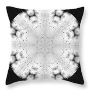 Spiderweb Dewed Snowflake Throw Pillow