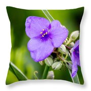 Spiderworts Throw Pillow