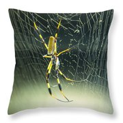 Spidey Busy At Work Throw Pillow