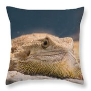 Spiked One Throw Pillow