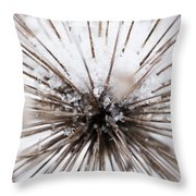 Spikes And Ice Throw Pillow