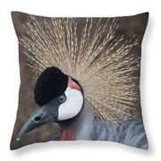 Spikey Feathers-closeup Throw Pillow