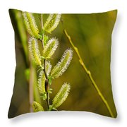 Spiky Green Plant Throw Pillow