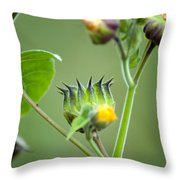 Spiky Green Wild Flowers Throw Pillow