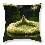 Spiky Lily Pad Throw Pillow