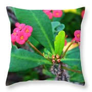 Spiky Pink Flowers Throw Pillow
