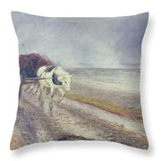 Spindrift Throw Pillow