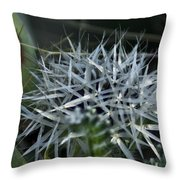 Spiney Bloom Throw Pillow