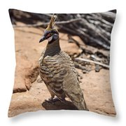 Spinifex Pigeon V3 Throw Pillow