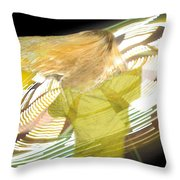 Spinning By Jan Marvin Throw Pillow